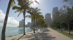 Afternoon in Miami, Florida Stock Footage