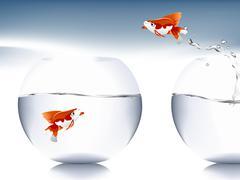 goldfish jumping - stock illustration