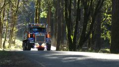 Dump Truck Driving Forest Road 1 Stock Footage