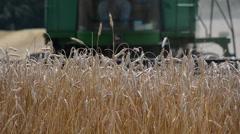 Generic HD wheat farming, 1080p HD Stock Footage