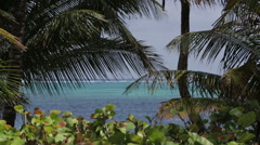Beautiful Caribbean Sea with palm trees, Belize beauty shot - stock footage