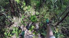 POV Ziplining over trees in Belize Stock Footage