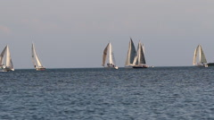 Sailboats on the water, 1080p HD Stock Footage