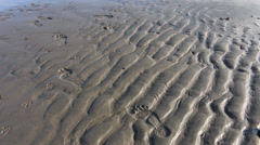 Footprints in the sand, 1080p HD with natural sound Stock Footage
