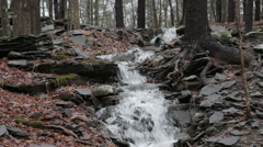 Stock Video Footage of Water flows down the woods in the Catskill Mountains in New York, NY