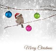 Christmas balls and sparrow bird with Santa Claus hat on snowy branch Kuvituskuvat
