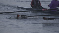 Rowing Boat Oars Close Up in Slow Motion - stock footage