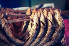 Cold smoked fish. Food Industry. Stock Photos