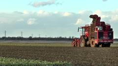 Sugar beet harvester lifting line of crop. Stock Footage