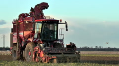 Sugar beet harvester - close front view. Stock Footage