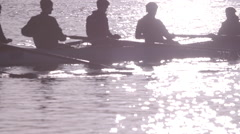 College Rowers Training in Sunlight - Slow Motion Stock Footage