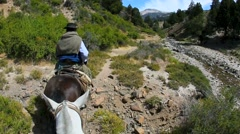 Horse ride in North Patagonia, Argentina - stock footage