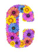Alphabet from spring flowers - stock photo