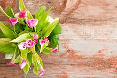 Fresh Calla Lilies on Table with Copy Space Stock Photos