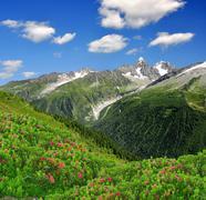 Savoy Alps-Europe - stock photo