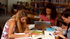 Students working together in the library Stock Footage