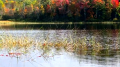 Norton Pond in Lincolnville, Maine Stock Footage
