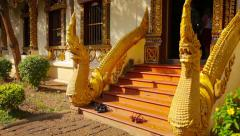 Entrance to Buddhist Temple in Chiang Mai, Thailand Stock Footage