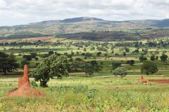 Landscape close to Yabelo, Ethiopia, Africa Stock Photos