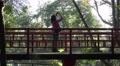 4k Girl taking photo on japanese bridge in tropical garden Madeira Footage