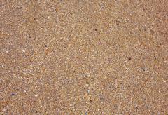 Fragmented Seashells - stock photo