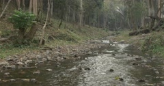 Calm River Flowing - stock footage