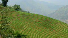 Time Lapse of Scenic Rice Terraces in the Northern Mountains of Vietnam -  Sapa Stock Footage