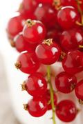 ripe redcurrant - stock photo