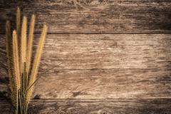 Stock Photo of beauty grass on wood background vintage color tone