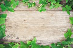 Foliage grass on grain wood background Stock Photos