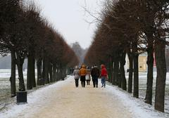 Alley in the park moscow - stock photo