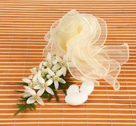 Favor with tulle and jasmine. - stock photo