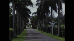 Railroad Crossing and Palms Stock Footage