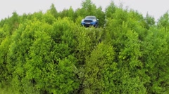 Mini cooper among foliage in Wonderland Park during Festival Stock Footage