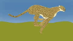 Cheetah Loop with Background Stock Footage