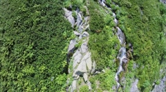Mountain brook among plants at summer sunny day. Aerial view Stock Footage