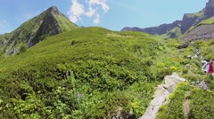 People walk near mountain stream at summer sunny day. Aerial view Stock Footage