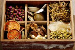 Stock Photo of ingredient for chinese herbal medicine