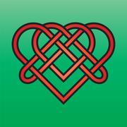Celtic Endless Knot - stock illustration