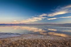 Pink clouds reflecting in a pool by the Chaxa Lagoon in the Atacama Desert, - stock photo