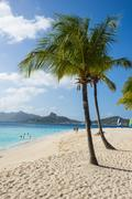 Palm Island, The Grenadines, St. Vincent and the Grenadines, Windward Islands, Stock Photos