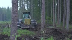 Forest harvester at work Stock Footage