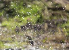 Splashes of water in nature Kuvituskuvat