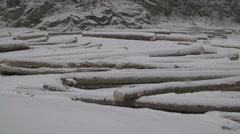 Lot of firewood, wood logs, winter supplies, cut tree trunk in winter scene - stock footage