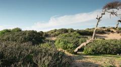 morocco coast atlantic beach scenic - stock footage