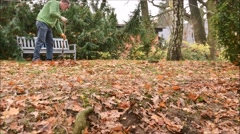 Raking leaves Stock Footage
