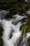 Cascade of small waterfall over mossy rocks, long exposure. Stock Photos