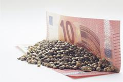 Ten euro banknote with a hemp seeds - stock photo