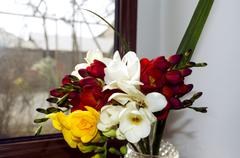 Stock Photo of Bright bouquet of odorous freesia on a windowsill