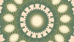 Floral animation of kaleidoscopic pattern with effect in pastel colors. Stock Footage